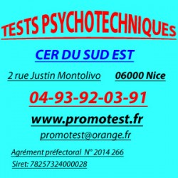 TEST PSYCHOTECHNIQUE